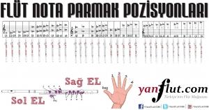 yan-flut-nota-parmak-pozisyonlari